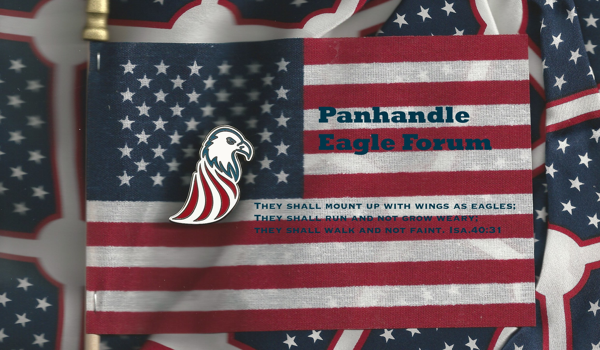 Panhandle Eagle Forum Logo