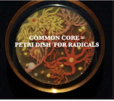 Petri dish for radicals